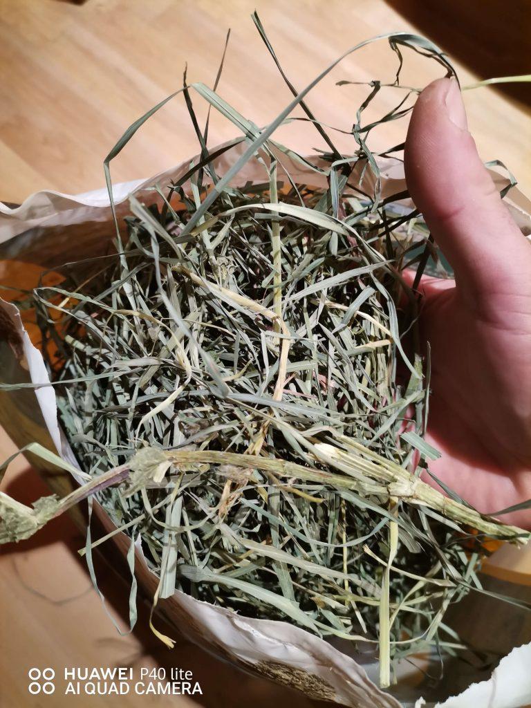 orchard grass heno de oxbow heno_freco_y_verde_de_calidad_para_conejos[1]